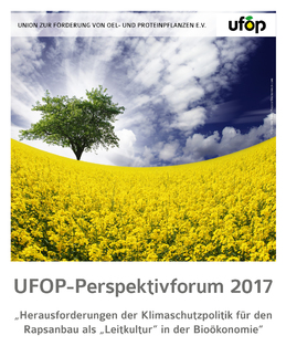 UFOP_Perspektivforum_2017_Cover.jpeg